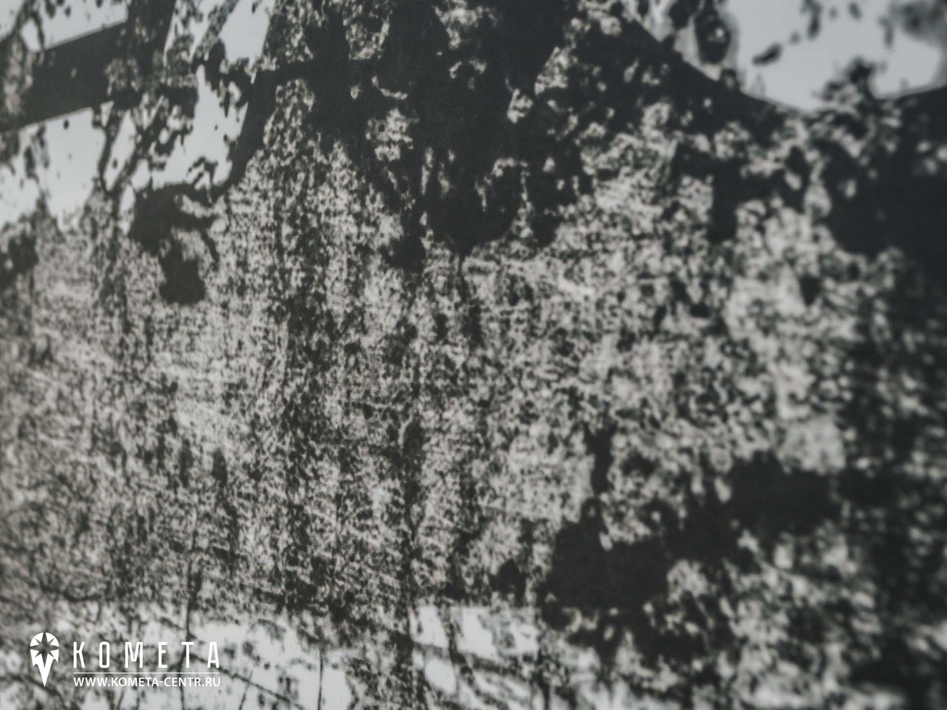 винилография симферополь